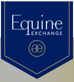 E exchange